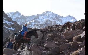 Géraldine sur sa mule